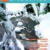 cover pe81 1
